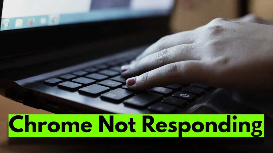 How to Fix Google Chrome Not Responding Issue in Windows 11